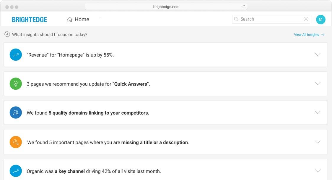 brightedge insights screenshot of home screen